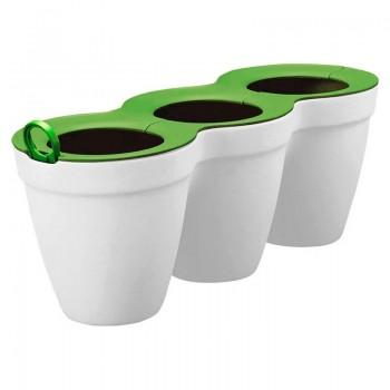 Ivy Herbs (белый с зеленым)